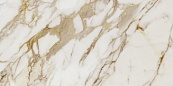 Calacatta Gold Pol Rect 60x120 плитка